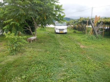 草刈り (2)