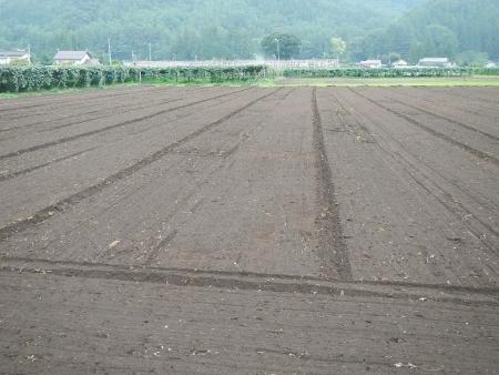 トラクターの耕起作業 (3)