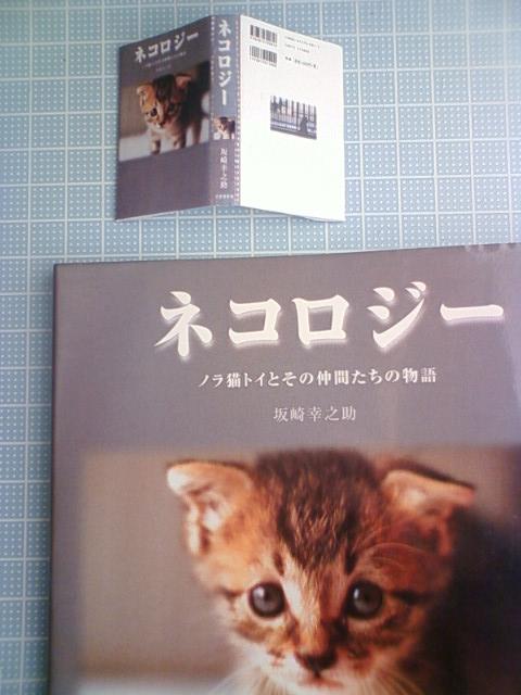 mini_book_e_20140413235407455.jpg
