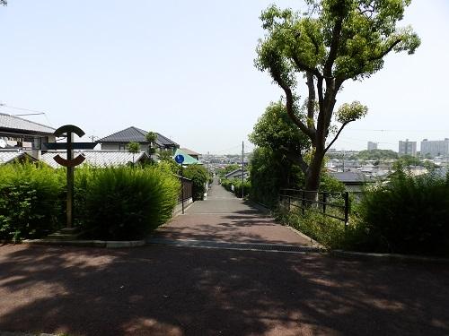 緑道から見た厚生道