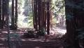 20140802 Hiking