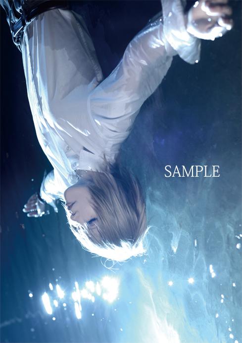 t_sample7.jpg