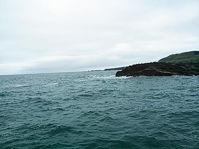 20140502 根島 北向