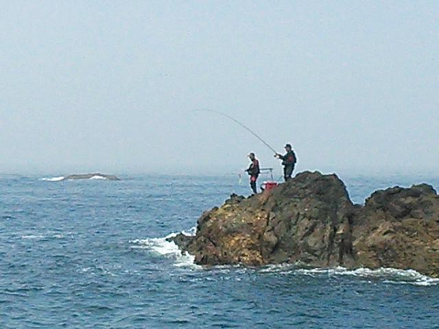 20140531 三ツ島 北