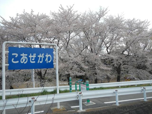DSCN7094.jpg
