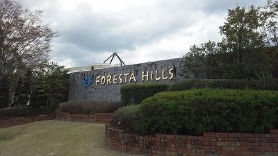 forestahills01.jpg
