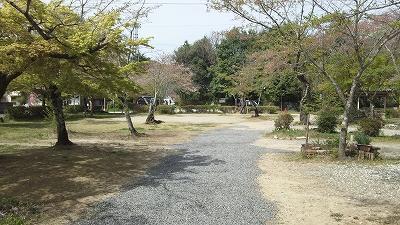 momotaro006.jpg