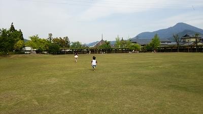 murasakis08.jpg