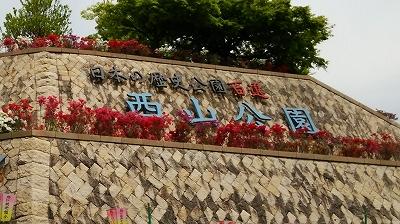 nishiyama01.jpg