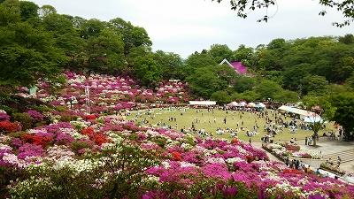 nishiyama05.jpg