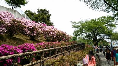 nishiyama08.jpg