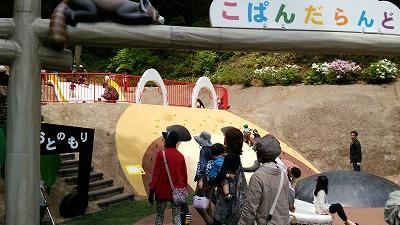 nishiyama17.jpg