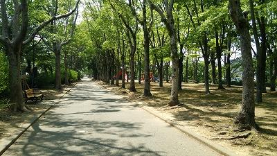 ushikawa04.jpg