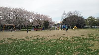 yanagawase02.jpg