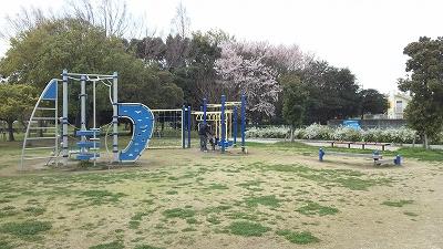yanagawase08.jpg