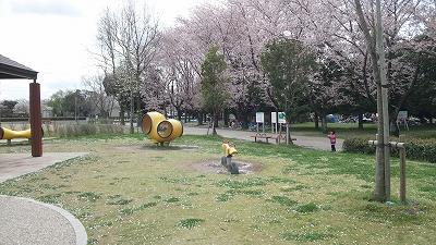 yanagawase09.jpg