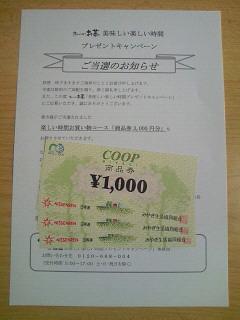 NEC_0152_20140303182520923.jpg