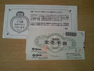 NEC_0265.jpg