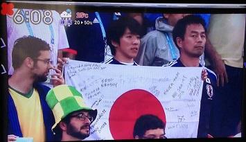 ヒナサッカー (1)