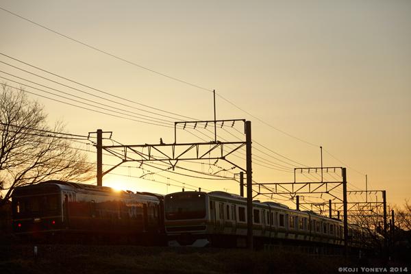 2014_03_15g.jpg