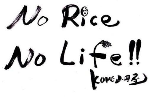 no rice, no life!!