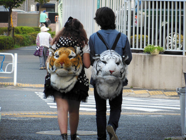 【画像】最近女子学生の間でこんなカバンが流行ってるらしい [無断転載禁止]©2ch.net [565250761]YouTube動画>2本 ->画像>155枚