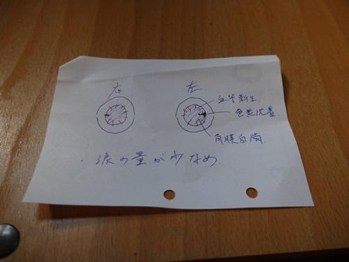 P1110036.jpg