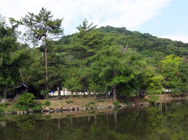 nakayama21.jpg