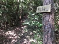 taka_20R.jpg