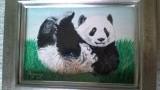 panda_20140811160504a8a.jpg