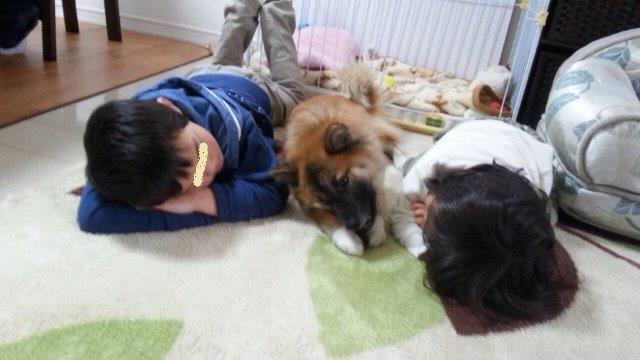 3.1狸と子供たち