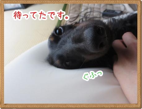 IMG_0729_4.jpg