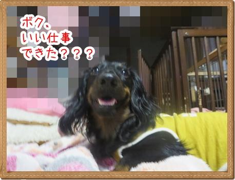 IMG_0819_2.jpg
