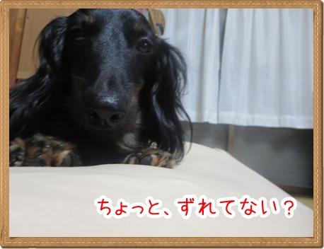 IMG_0821_5.jpg
