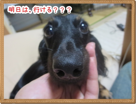 IMG_0827_3.jpg