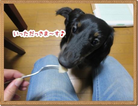 IMG_0831_7.jpg