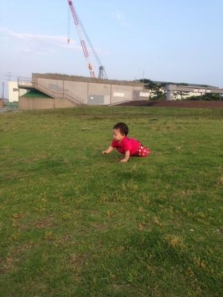 芝生でハイ