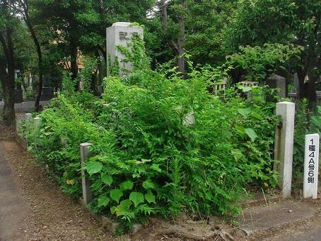 雑司ヶ谷霊園08