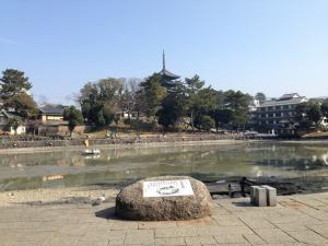 sarusawa0226_convert_20140226115453.jpg