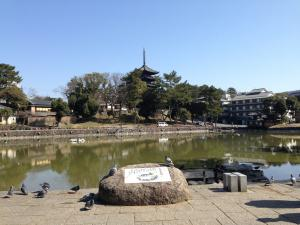 sarusawa0312_convert_20140312112724.jpg