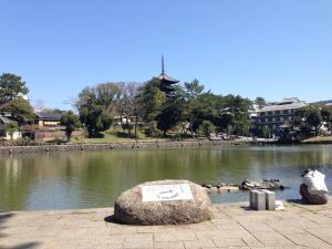 sarusawa0331_convert_20140331131029.jpg