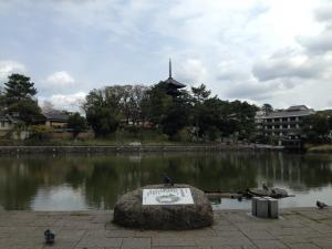 sarusawa0405_convert_20140405113732.jpg