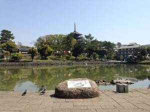 sarusawa0419_convert_20140419111727.jpg