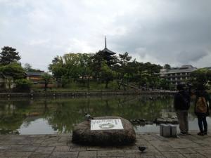 sarusawa0430_convert_20140430111834.jpg