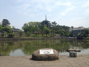 sarusawa0503_convert_20140503160338.jpg