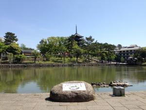 sarusawa0504_convert_20140504111513.jpg
