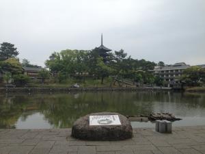 sarusawa0512_convert_20140512111329.jpg