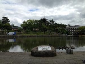 sarusawa0523_convert_20140523112542.jpg