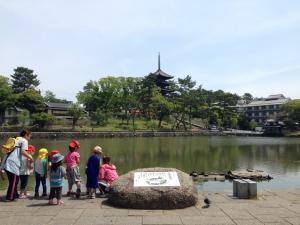 sarusawa0524_convert_20140524114245.jpg