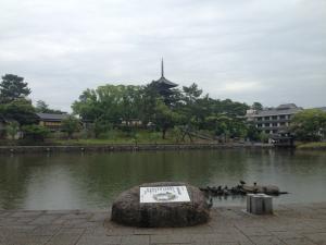 sarusawa0526_convert_20140526110713.jpg